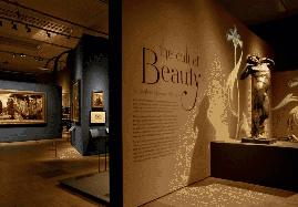 Didáctica de las exposiciones